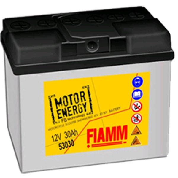 FIAMM 53030 FLOODED 12V 30AH 7904462