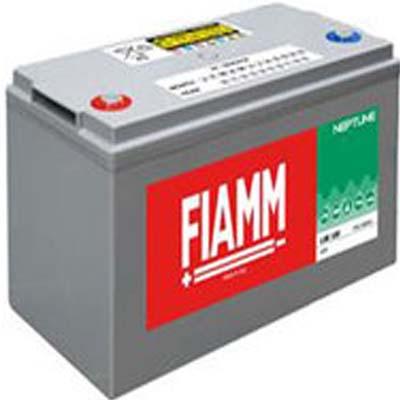 FIAMM LSB100 100AH 793680