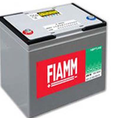FIAMM LSB80 80AH 7903679